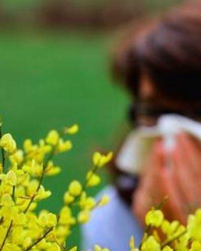 Allergie au pollen, pourquoi et comment y remédier ?