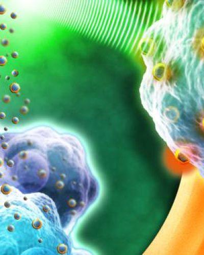 Les sarcomes : des cancers rares mais redoutables